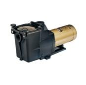 Hayward Super Pool Pump
